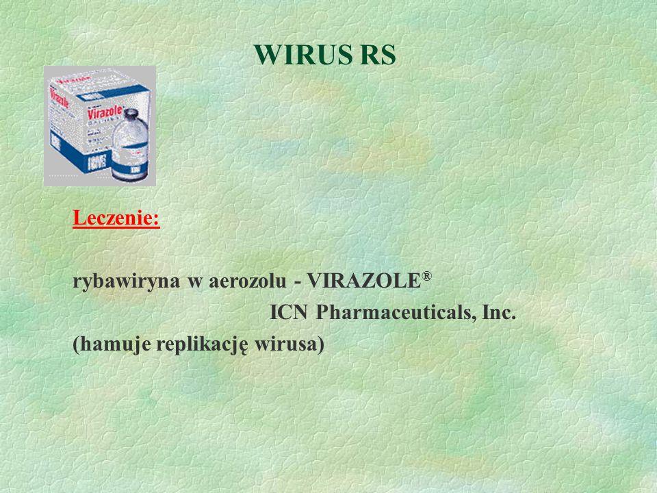 WIRUS RS Leczenie: rybawiryna w aerozolu - VIRAZOLE®
