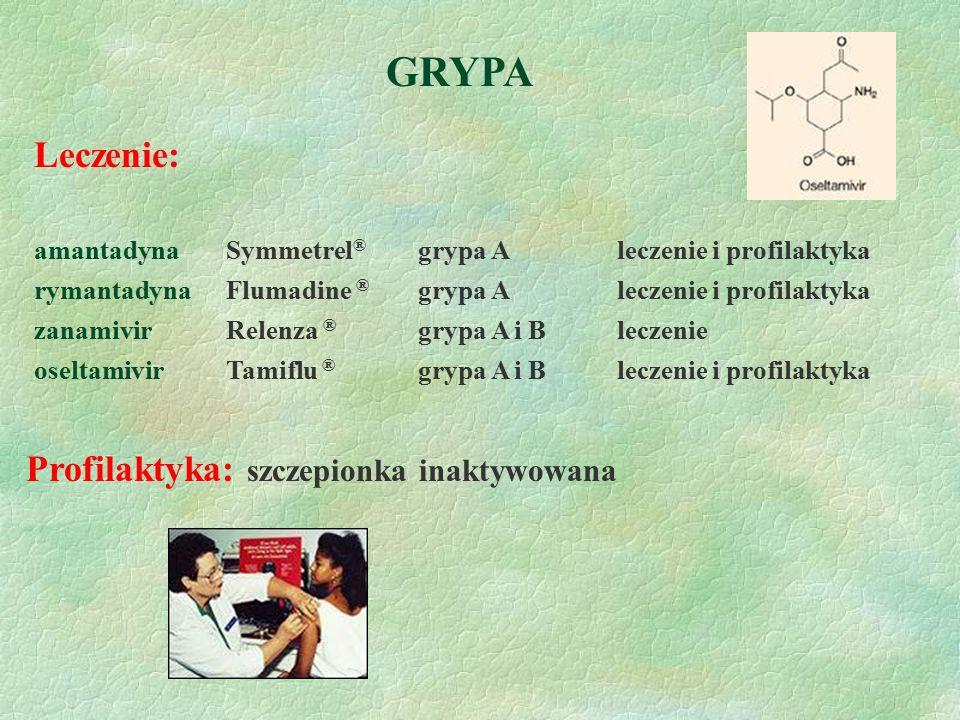 GRYPA Leczenie: Profilaktyka: szczepionka inaktywowana
