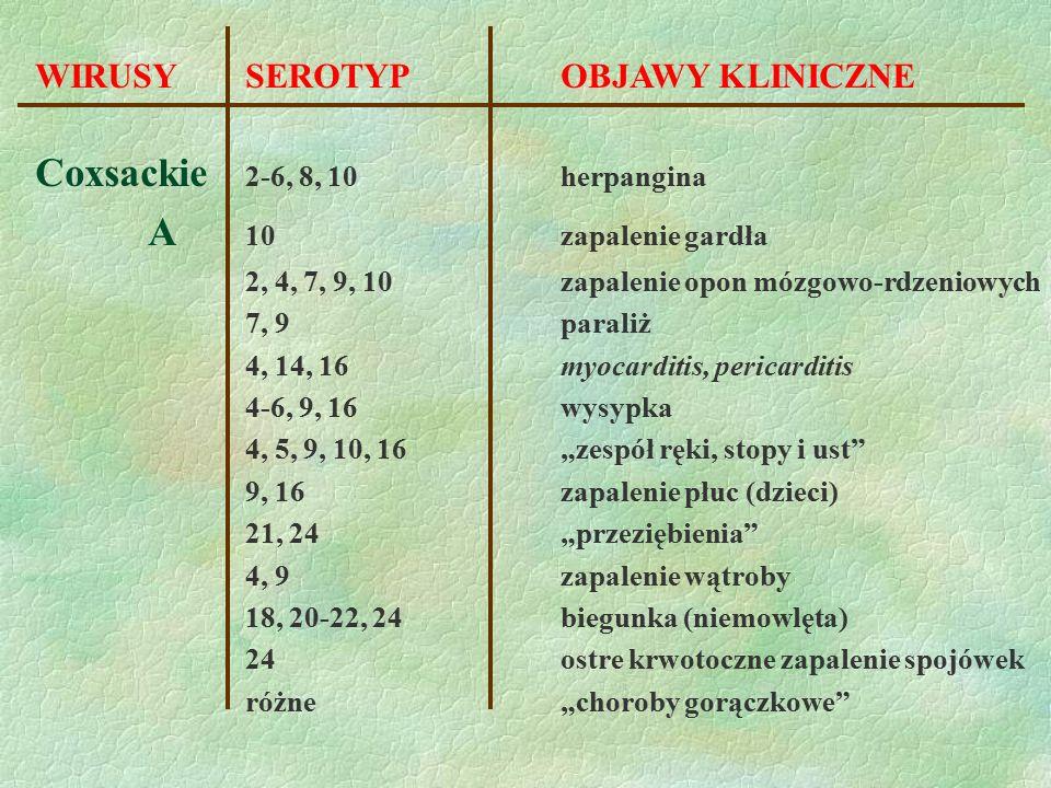 Coxsackie 2-6, 8, 10 herpangina