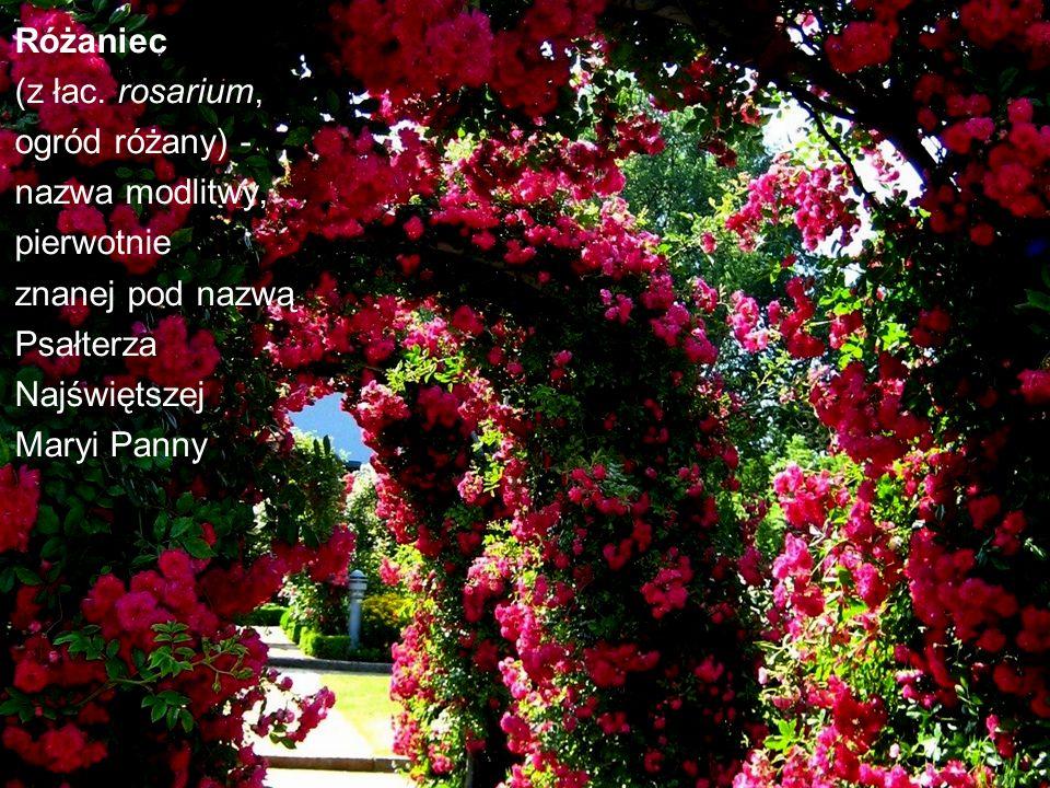 Różaniec (z łac. rosarium, ogród różany) - nazwa modlitwy, pierwotnie. znanej pod nazwą. Psałterza.