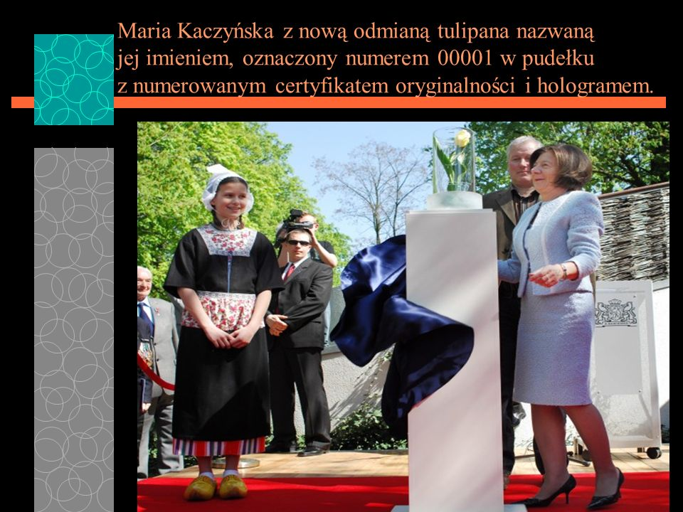 Maria Kaczyńska z nową odmianą tulipana nazwaną jej imieniem, oznaczony numerem 00001 w pudełku z numerowanym certyfikatem oryginalności i hologramem.