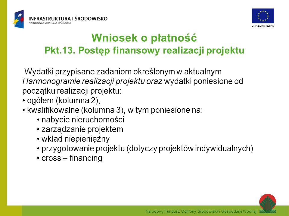Pkt.13. Postęp finansowy realizacji projektu