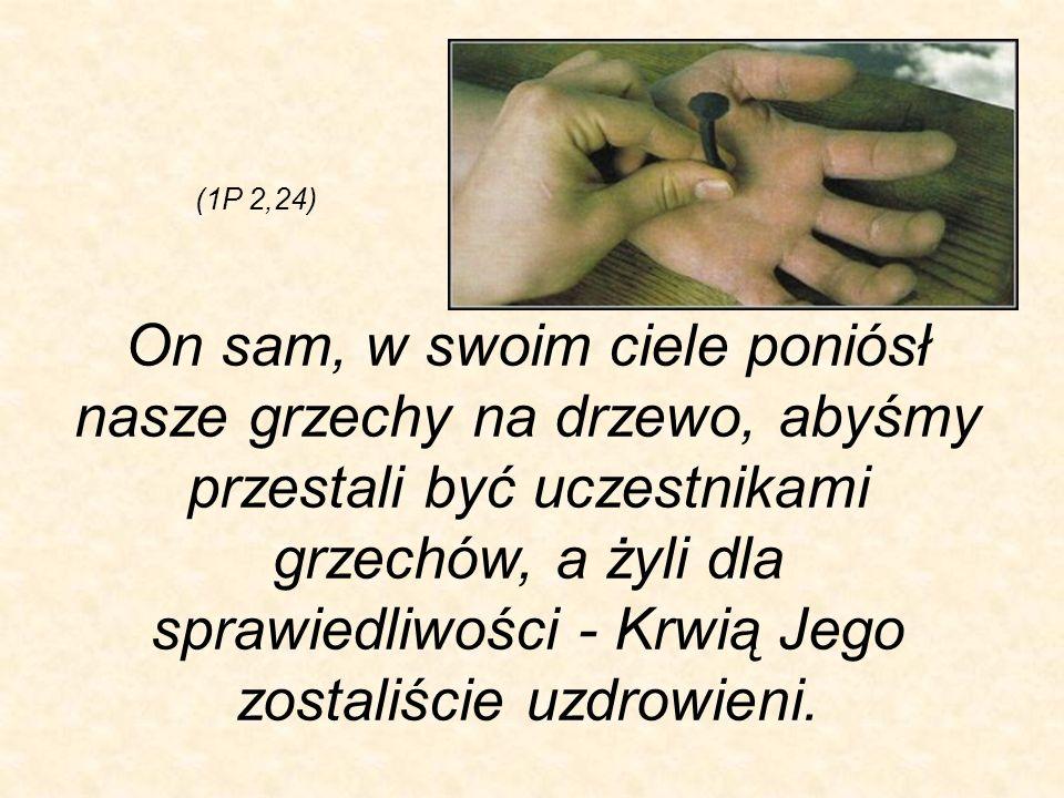 (1P 2,24)