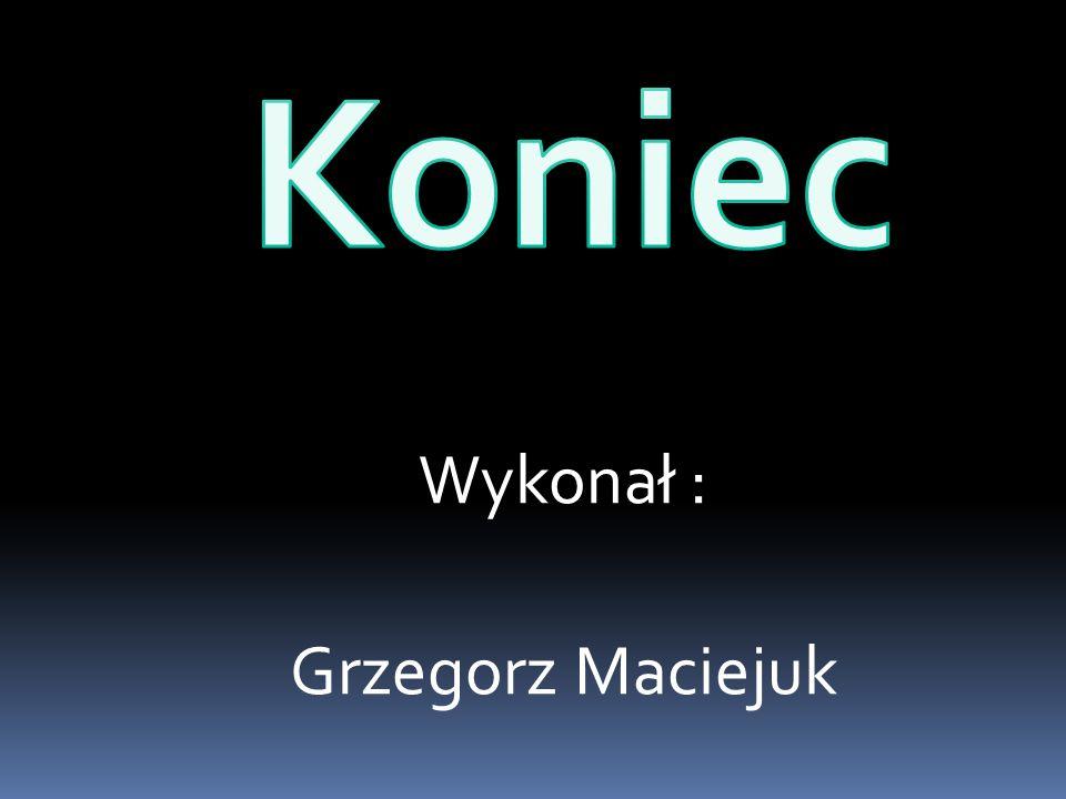 Wykonał : Grzegorz Maciejuk