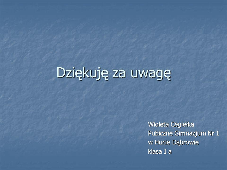 Dziękuję za uwagę Wioleta Cegiełka Pubiczne Gimnazjum Nr 1