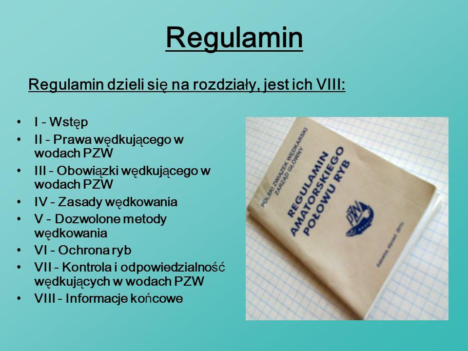 Regulamin Regulamin dzieli się na rozdziały, jest ich VIII: I - Wstęp