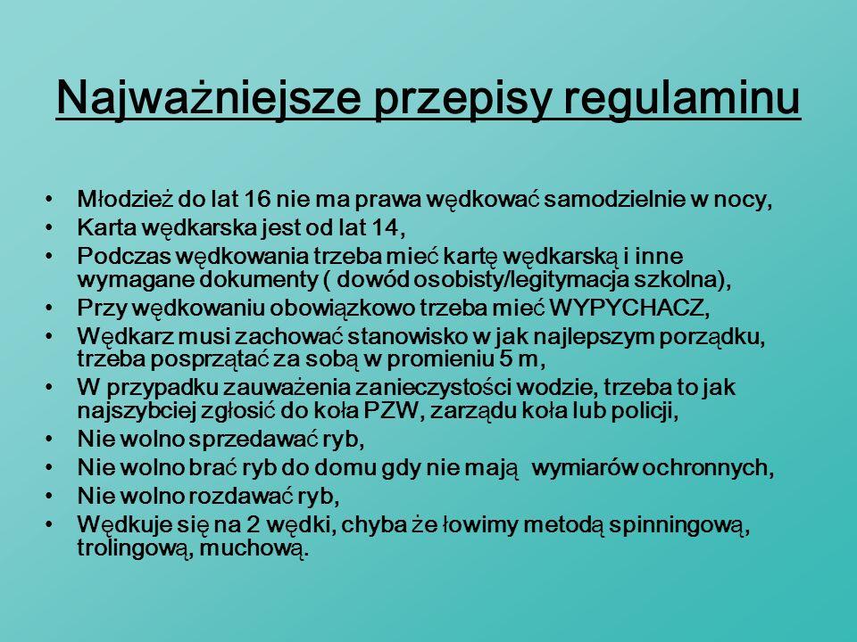 Najważniejsze przepisy regulaminu