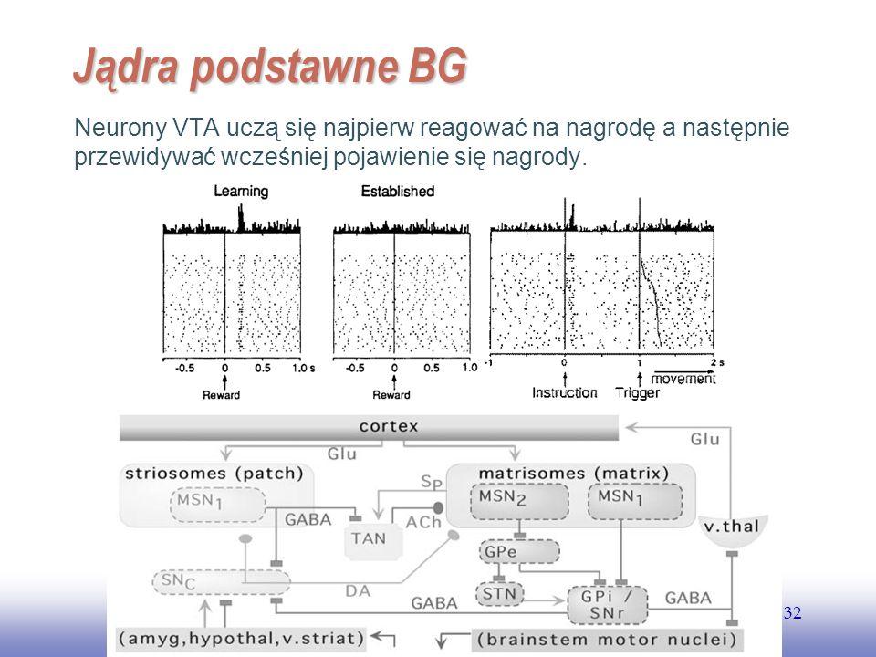 EE141 Jądra podstawne BG.