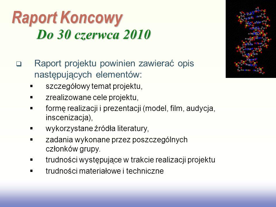 Raport Koncowy Do 30 czerwca 2010
