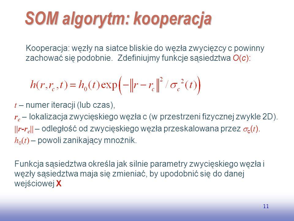 SOM algorytm: kooperacja