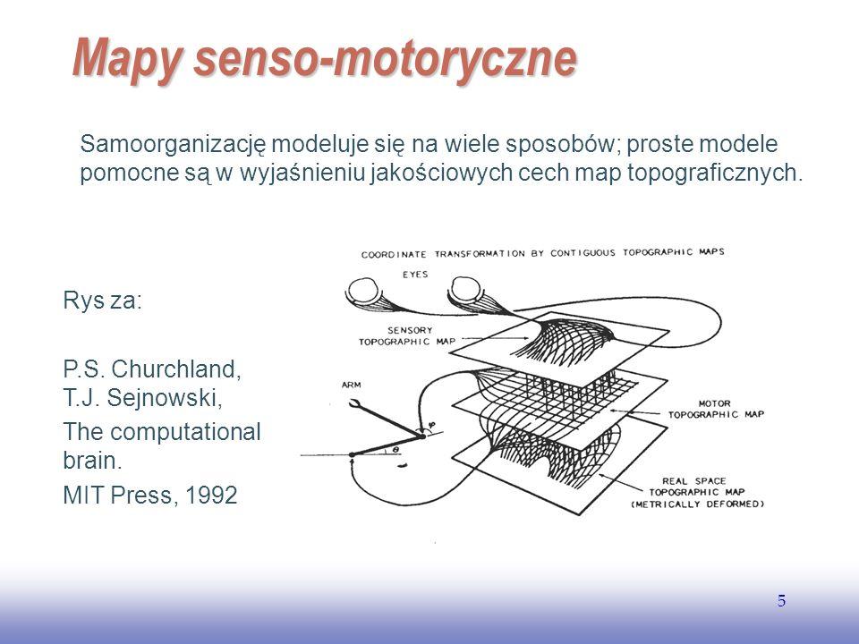 Mapy senso-motoryczne