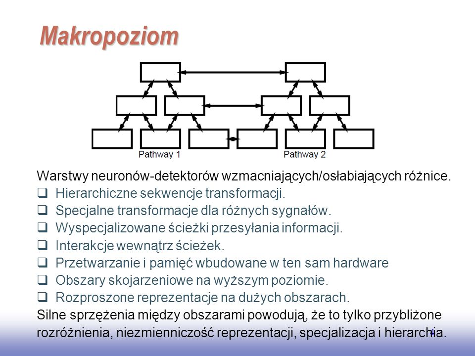 EE141 Makropoziom. Warstwy neuronów-detektorów wzmacniających/osłabiających różnice. Hierarchiczne sekwencje transformacji.