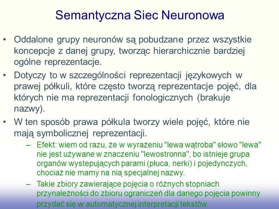 Semantyczna Siec Neuronowa