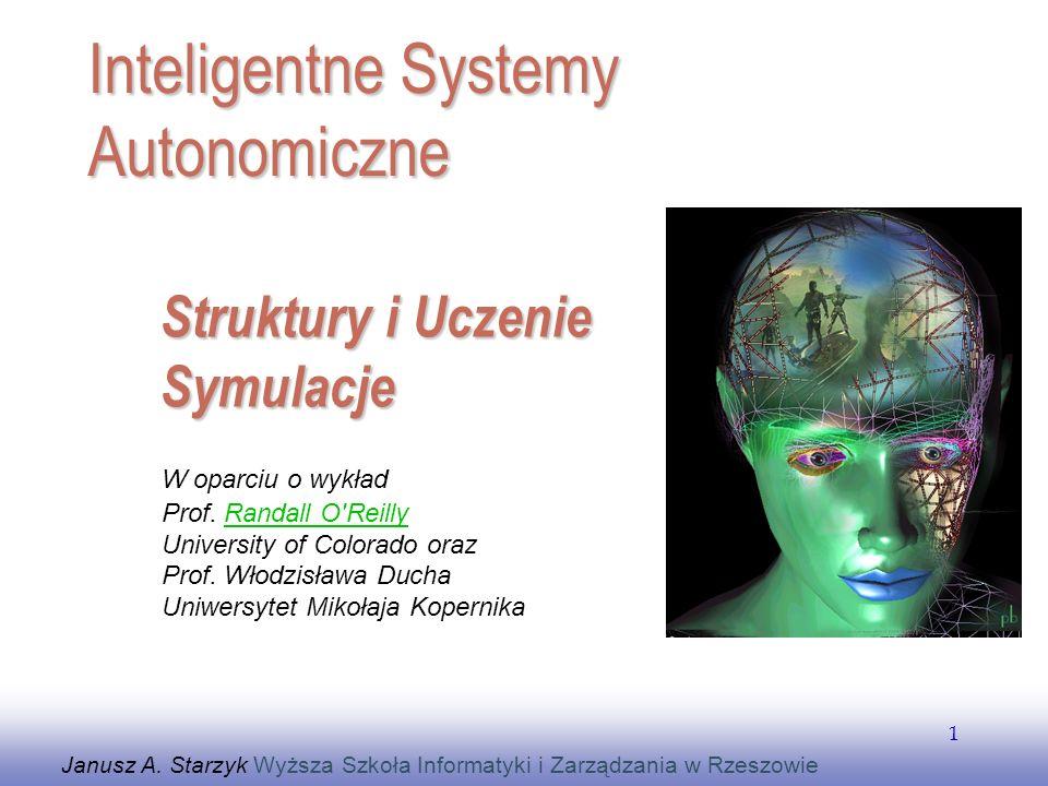 Struktury i Uczenie Symulacje