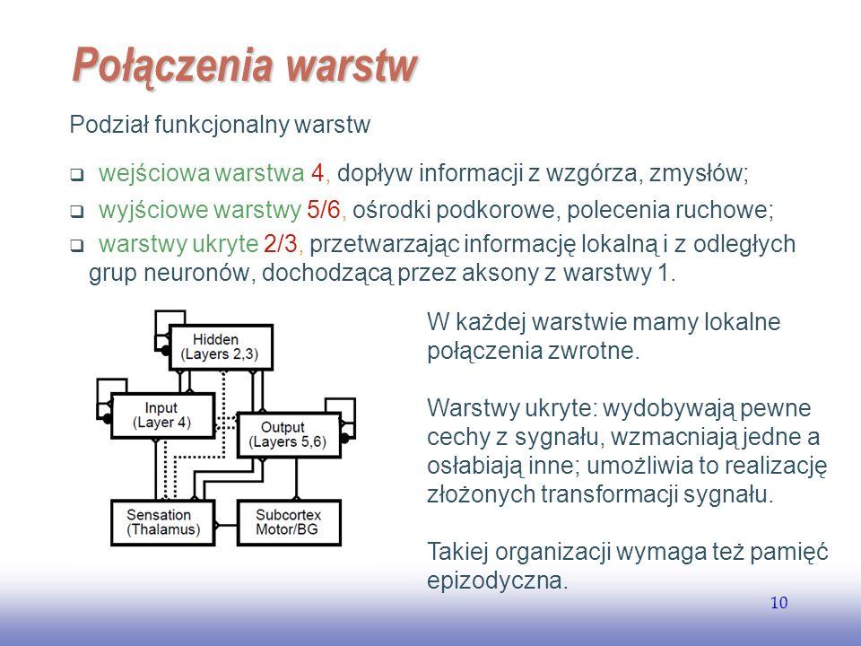 Połączenia warstw Podział funkcjonalny warstw: