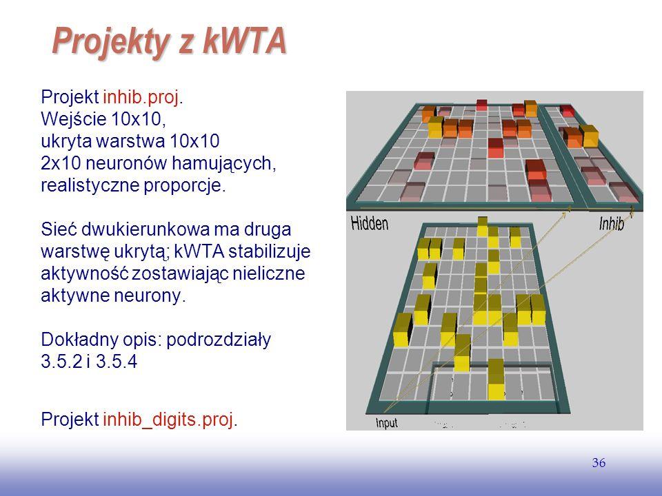 Projekty z kWTA Projekt inhib.proj. Wejście 10x10,