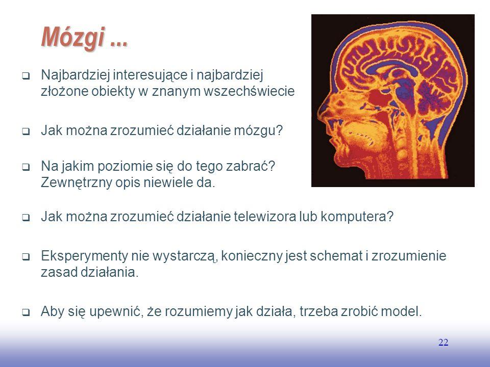 EE141 Mózgi ... Najbardziej interesujące i najbardziej złożone obiekty w znanym wszechświecie. Jak można zrozumieć działanie mózgu
