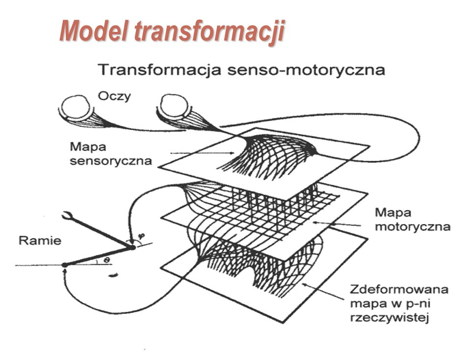Model transformacji ~ p(MI|X) Myocardial Infarction (atak serca)