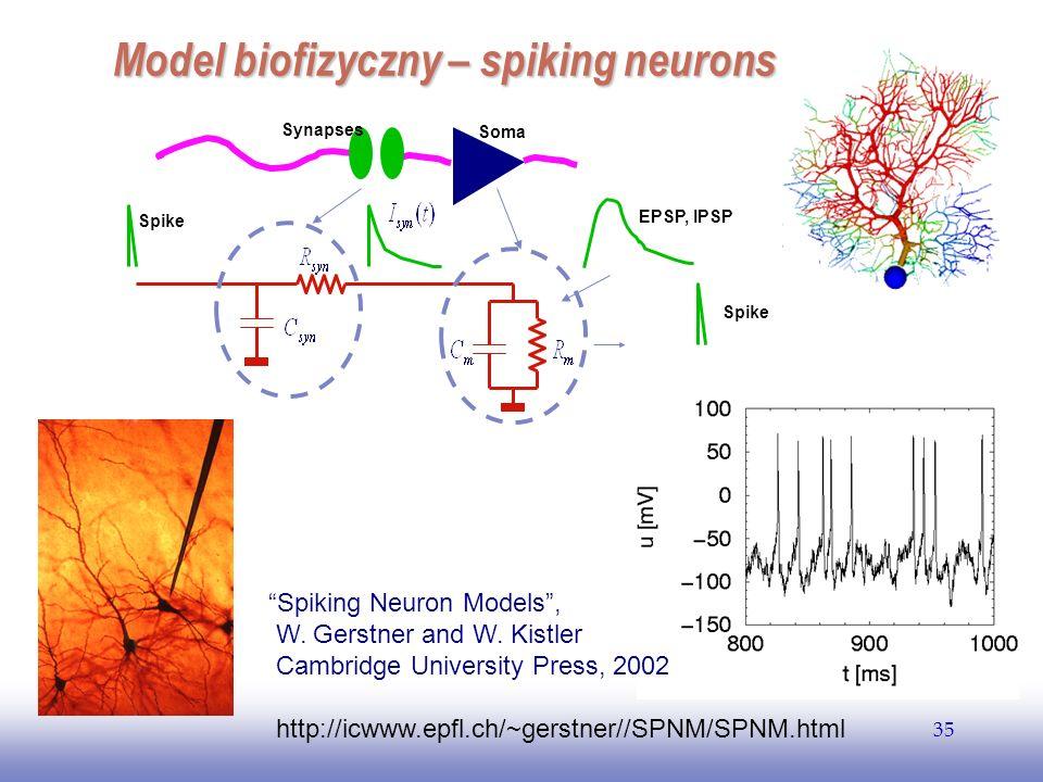 Model biofizyczny – spiking neurons