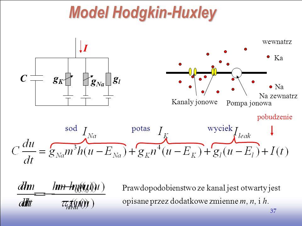 Model Hodgkin-Huxley C gl gK gNa I sod potas wyciek