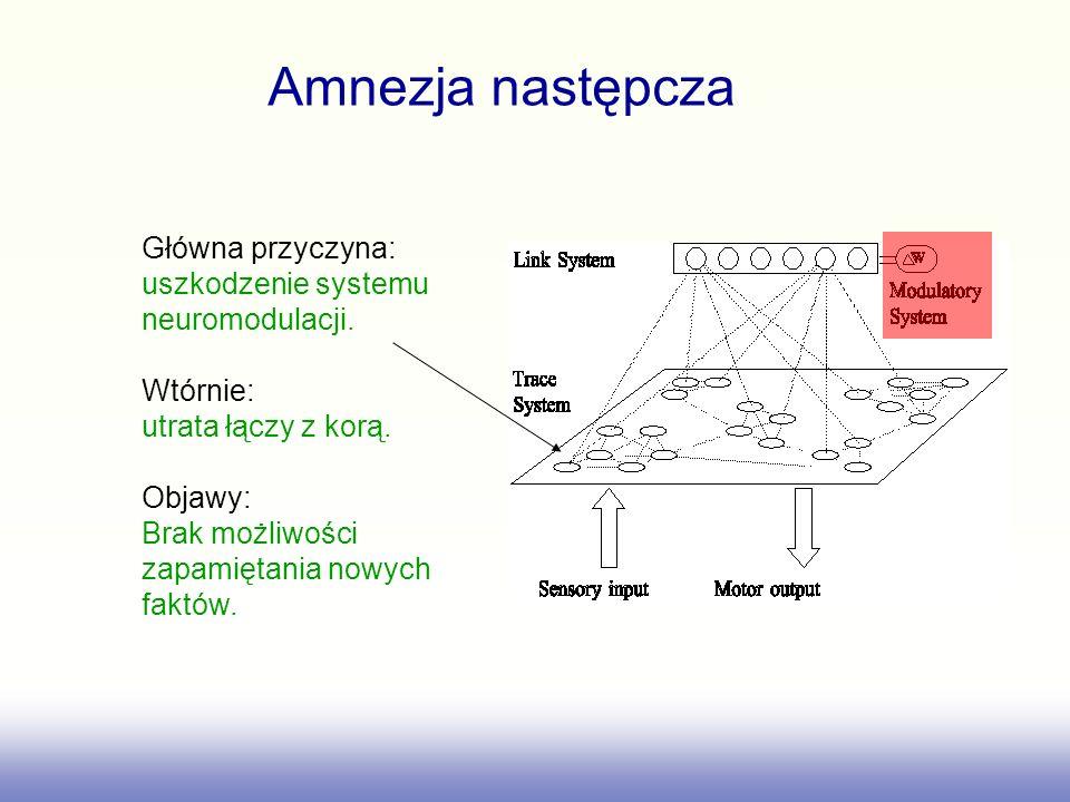 Amnezja następcza Główna przyczyna: