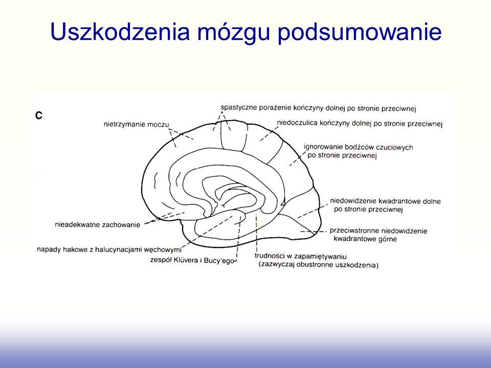 Uszkodzenia mózgu podsumowanie