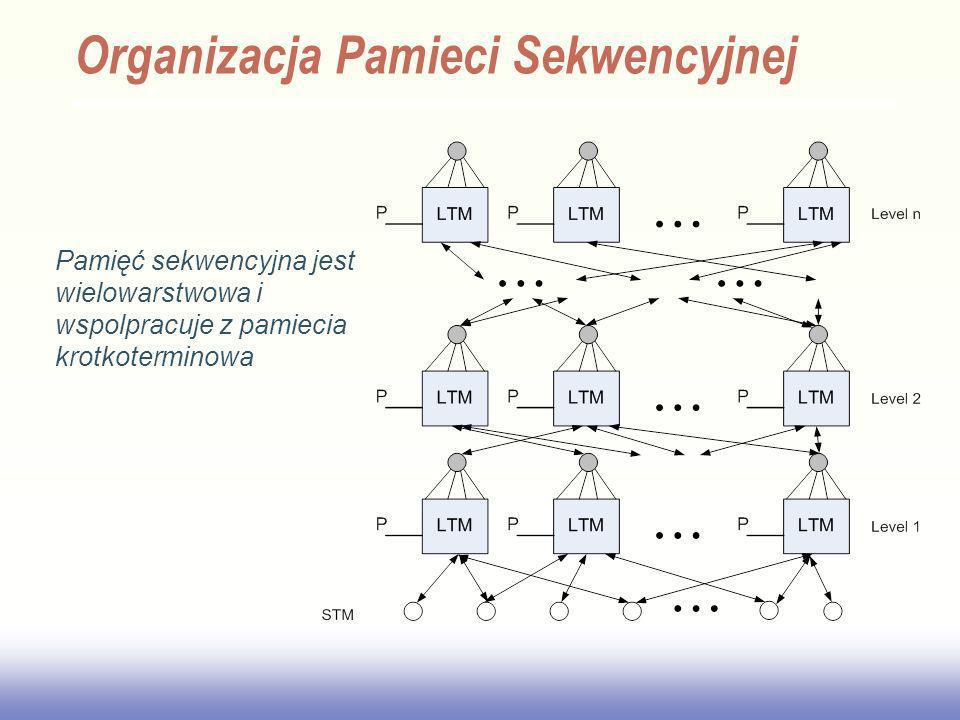 Organizacja Pamieci Sekwencyjnej