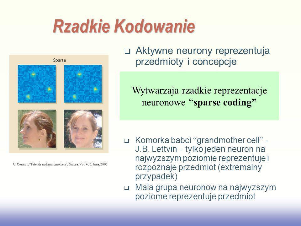 Rzadkie Kodowanie Aktywne neurony reprezentuja przedmioty i concepcje