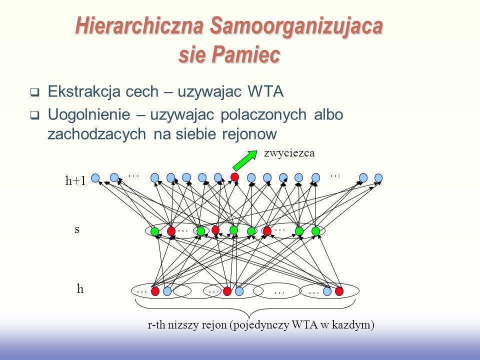 Hierarchiczna Samoorganizujaca sie Pamiec