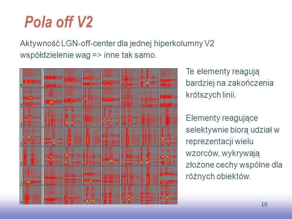 EE141 Pola off V2. Aktywność LGN-off-center dla jednej hiperkolumny V2 współdzielenie wag => inne tak samo.