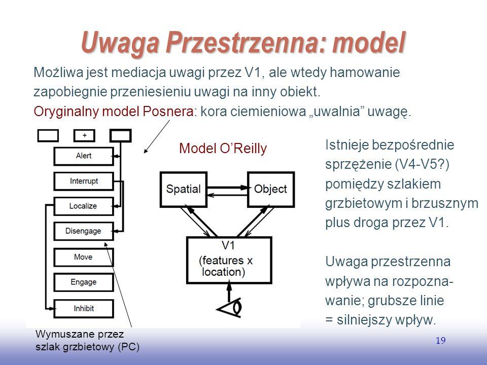 Uwaga Przestrzenna: model
