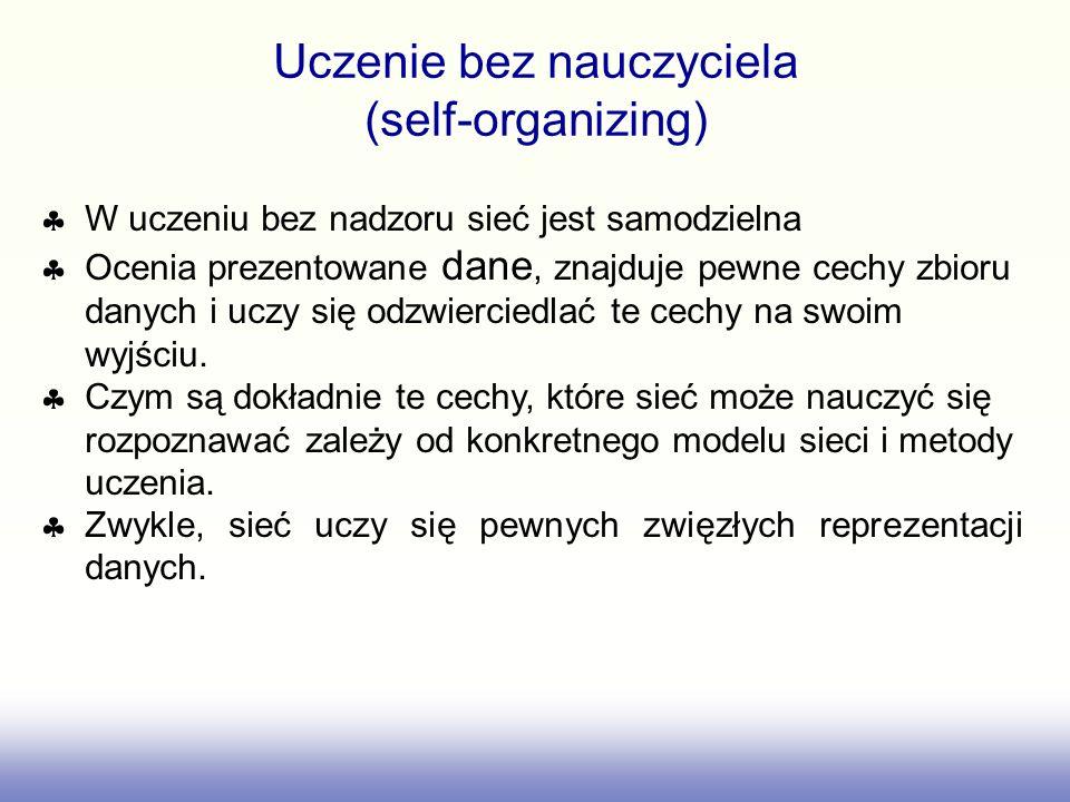 Uczenie bez nauczyciela (self-organizing)