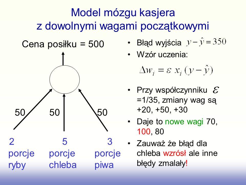 Model mózgu kasjera z dowolnymi wagami początkowymi