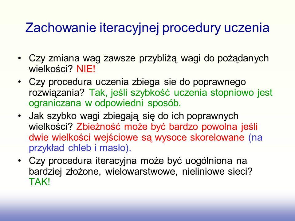 Zachowanie iteracyjnej procedury uczenia
