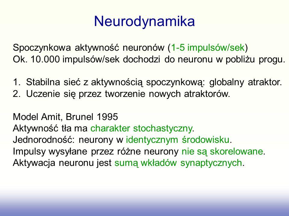 Neurodynamika Spoczynkowa aktywność neuronów (1-5 impulsów/sek)