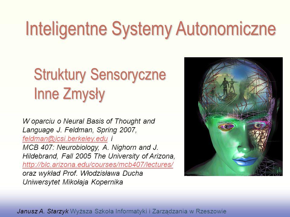 Struktury Sensoryczne Inne Zmysły
