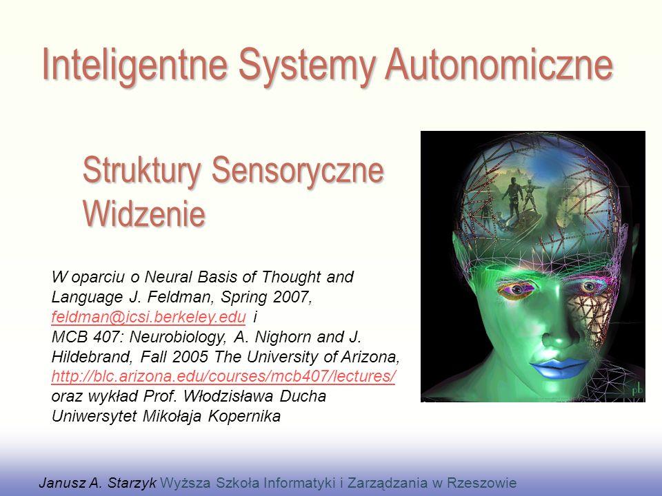 Struktury Sensoryczne Widzenie