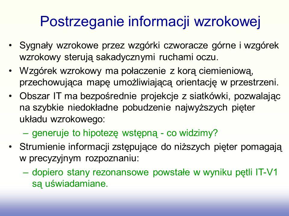 Postrzeganie informacji wzrokowej