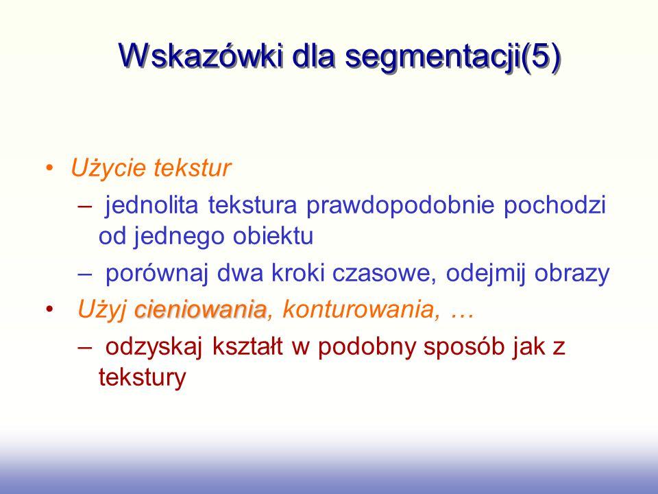 Wskazówki dla segmentacji(5)