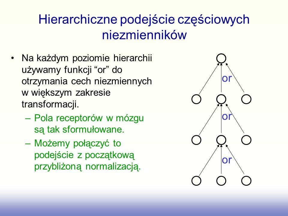Hierarchiczne podejście częściowych niezmienników
