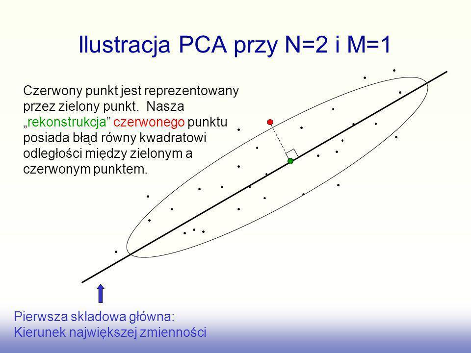 Ilustracja PCA przy N=2 i M=1