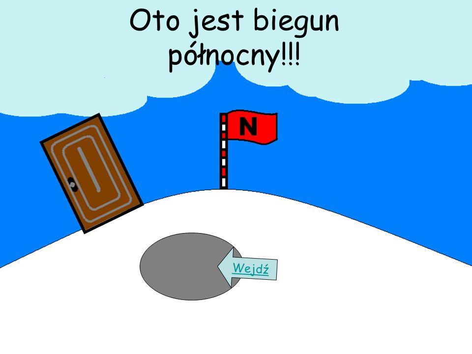Oto jest biegun północny!!!