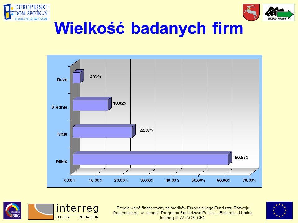 Wielkość badanych firm