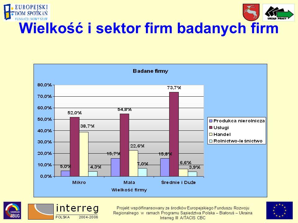 Wielkość i sektor firm badanych firm