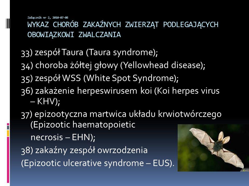 33) zespół Taura (Taura syndrome);