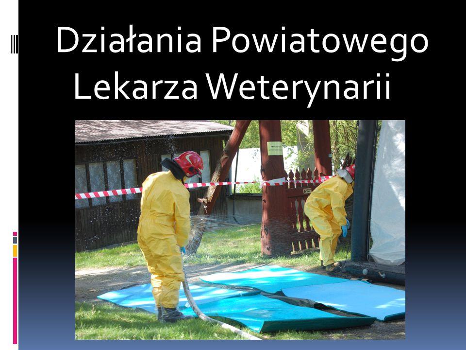 Działania Powiatowego Lekarza Weterynarii