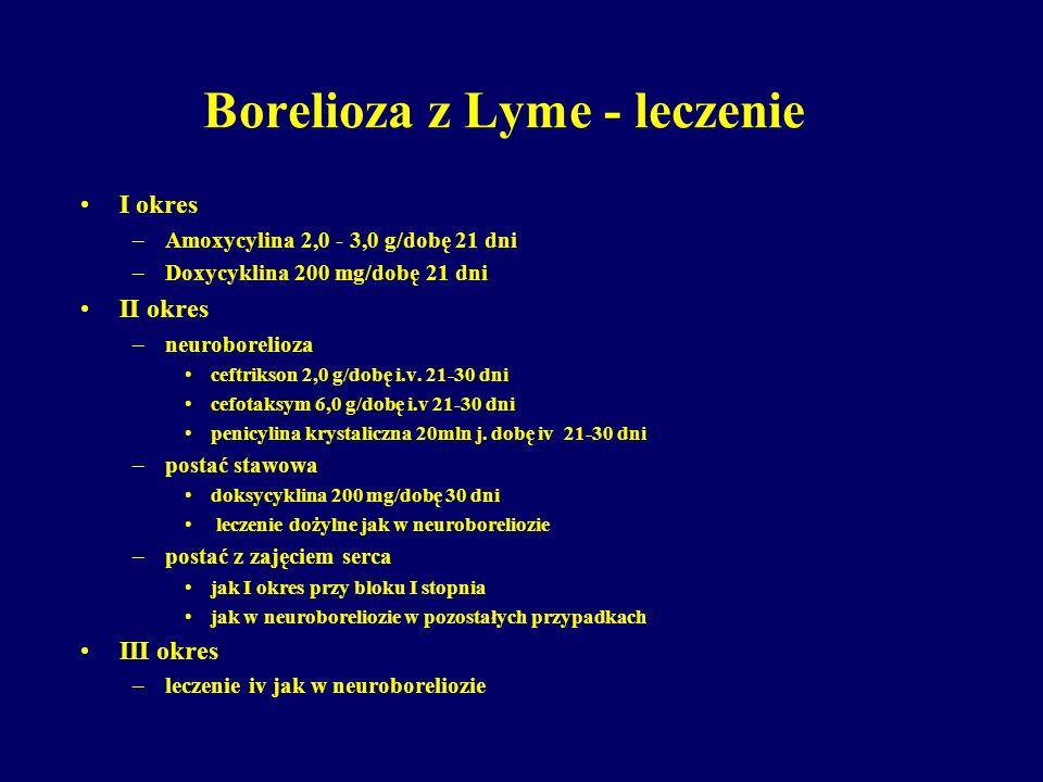 Borelioza z Lyme - leczenie