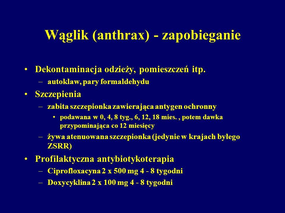 Wąglik (anthrax) - zapobieganie