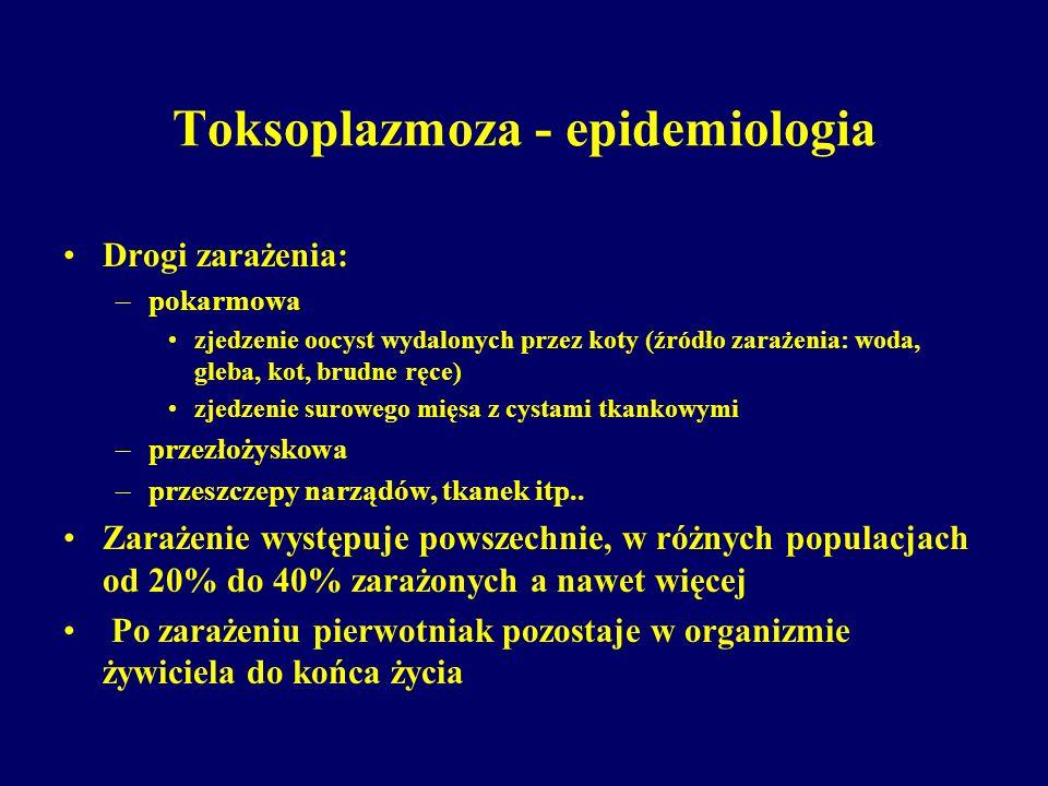 Toksoplazmoza - epidemiologia