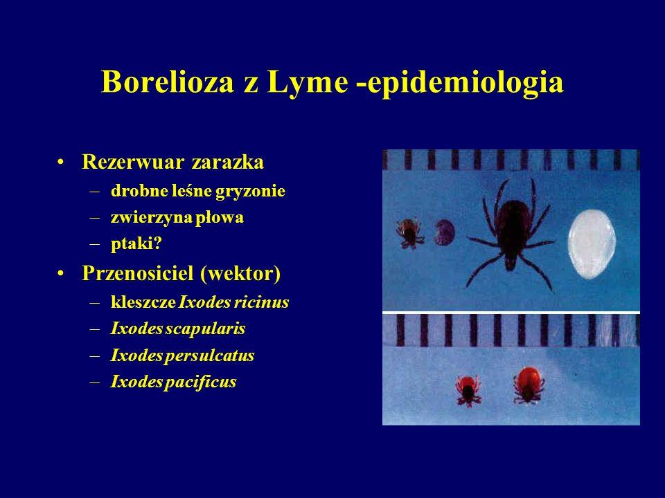 Borelioza z Lyme -epidemiologia